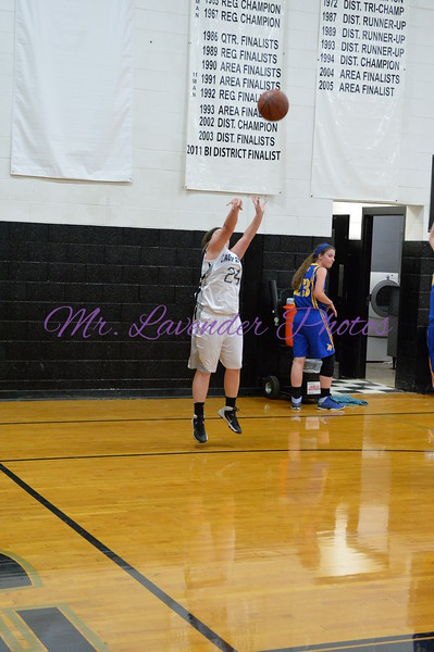 2014-2015 High School Basketball Season
