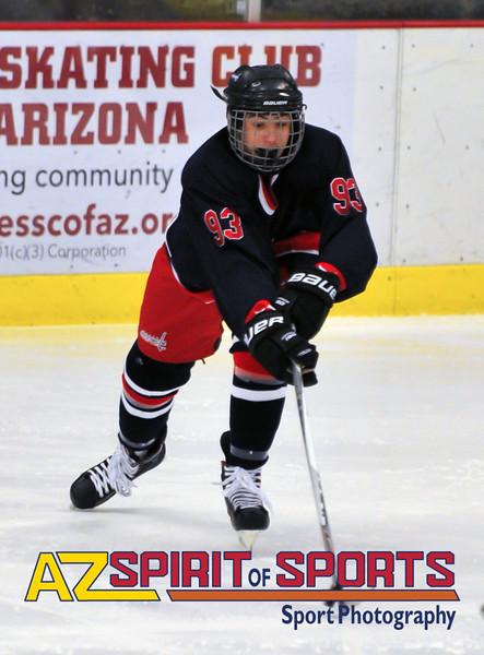 Hockey held at Home,  Arizona on 1/21/2016.