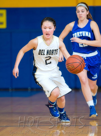 JV Girls Fortuna @ Del Norte 02-13-14