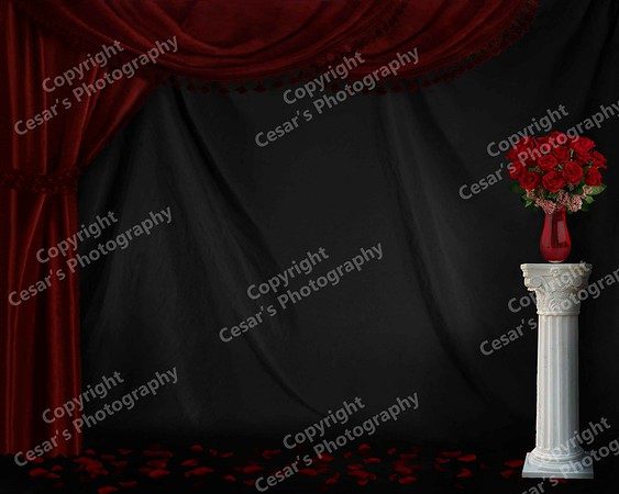 Formal Red Roses (H)