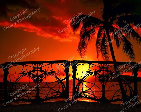 Hawaii by Moonlight (H)
