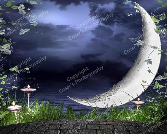 Moonlight Seranade (H)