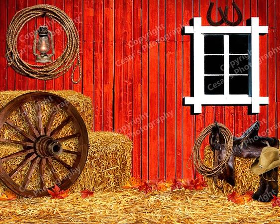 Barn Dance (H)