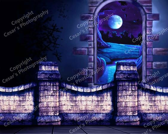 Fantasy Castle (H)