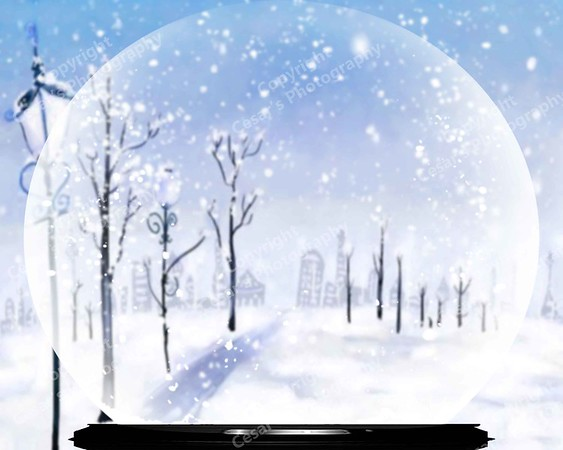 Snow Globe of Frostyville (H)
