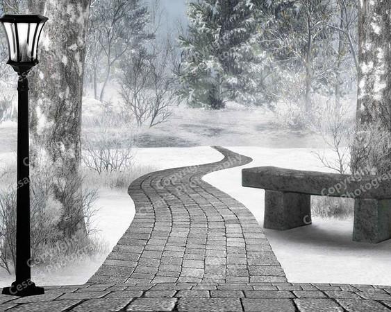 A Winters Walk (H)