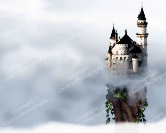 A Castle in the Sky (H)