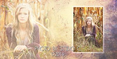 Lindsay's Album_-16