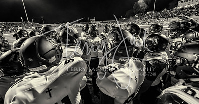 Servite vs  MV D810-31bw