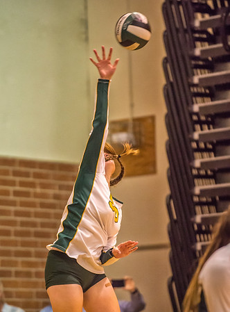 EHS Volleyball-038