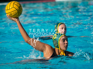 Edison Water Polo-150