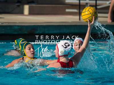 Edison Water Polo-155