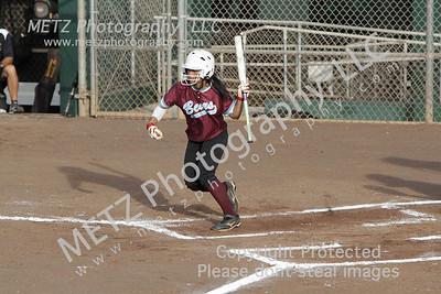 High School Sports 2010-11