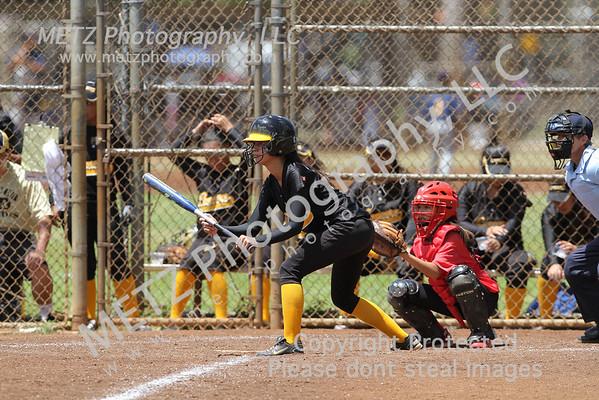 High School Softball 2011