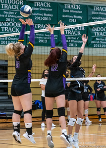 Griffin Volleyball vs Brockport-45