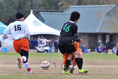 fresh soccer 1-4 (50)