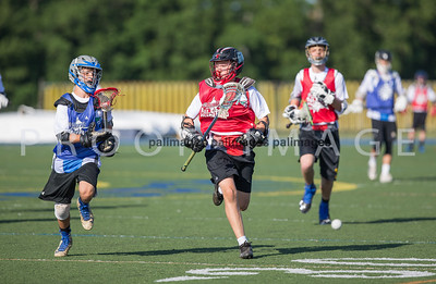 North_South_YLAX17-416