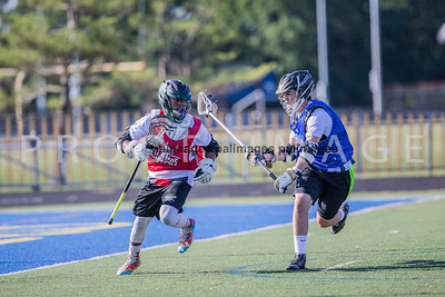 North_South_YLAX17-224-2