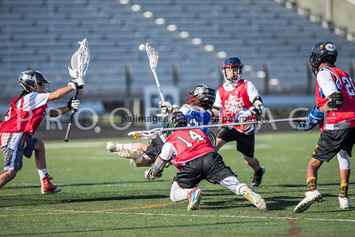 North_South_YLAX17-488