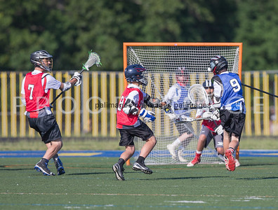 North_South_YLAX17-265