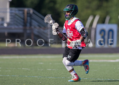 North_South_YLAX17-212-2