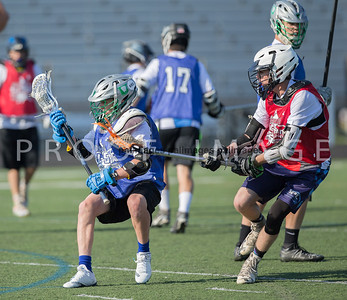North_South_YLAX17-253