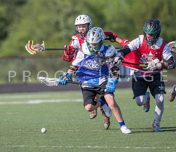 North_South_YLAX17-464