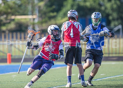 North_South_YLAX17-230