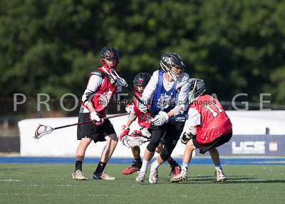 North_South_YLAX17-312