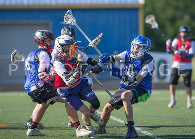 North_South_YLAX17-235