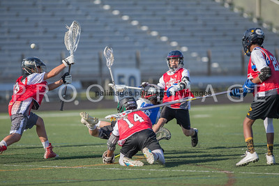 North_South_YLAX17-489