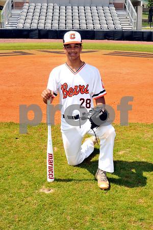 baseball (25)