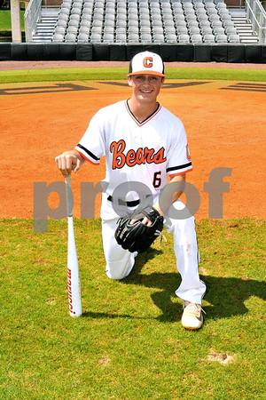 baseball (21)