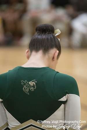 1-20-2018 Northwest HS Poms Invitational Division 1, MoCoDaily, Photos by Jeffrey Vogt