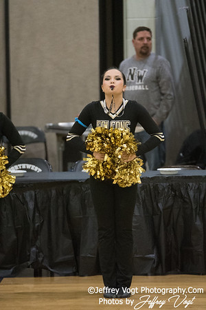 1-20-2018 Poolesville HS at Northwest HS Poms Invitational Division 1, MoCoDaily, Photos by Jeffrey Vogt