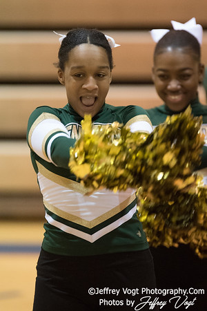1/27/2018 Watkins Mill HS Pompons Invitational Division 3, Photos by Jeffrey Vogt, MoCoDaily
