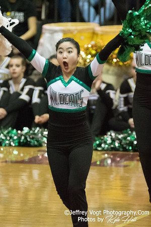 2/3/2018 Walter Johnson HS at MCPS County Poms Championship Blair HS Division 1, Photos by Kyle Hall, MoCoDaily