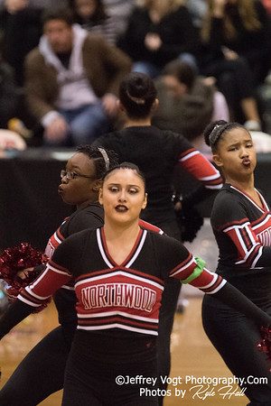2/3/2018 Northwood HS at MCPS County Poms Championship Blair HS Division 2, Photos by Kyle Hall, MoCoDaily
