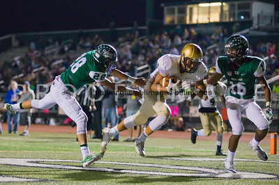 LongBranch_FBoro_FB17-511