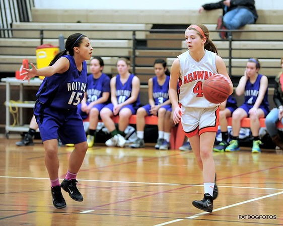 AHS Girls Basketball vs Holyoke 2-6-2014