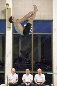 Cheshire's Brendan Bradley completes a dive Thursday at the Sheehan High School Natatorium in Wallingford  February 1, 2018 | Justin Weekes / Special to the Record-Journal