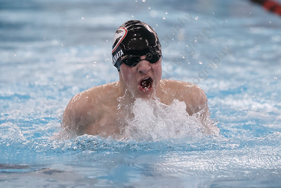 Cheshire's Joseph Cannata in the 200 medley relay Tuesday at the Cheshire Community Pool in Cheshire February 13, 2018 | Justin Weekes / Special to the Record-Journal