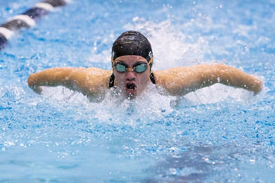 Cheshire's Samantha Grenon swims the butterfly stroke in the 200 individual medley Tuesday during the CIAC Class L swimming finals at the Hutchinson Natatorium on the campus of SCSU in New Haven November 13, 2018 | Justin Weekes / Special to the Record-Journal