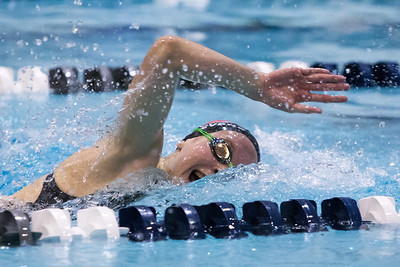 Cheshire's Julia Stevens in the 200 freestyle Tuesday during the CIAC Class L swimming finals at the Hutchinson Natatorium on the campus of SCSU in New Haven November 13, 2018 | Justin Weekes / Special to the Record-Journal