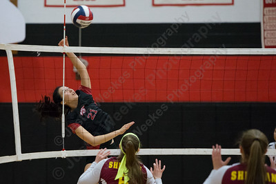 Cheshire's Jenny Wang gets a spike off uncontested Thursday during the SCC semifinals at Cheshire High School in Cheshire November 2, 2017   Justin Weekes / For the Record-Journal