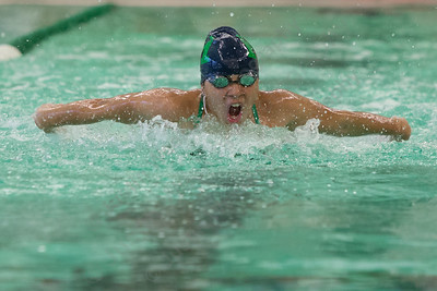 Meriden's Jocelyn Rodriguez swims the butterfly stroke in the 200 medley relay Tuesday at Maloney High School pool in Meriden October 24, 2017 | Justin Weekes / For the Record-Journal