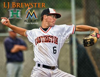 Brewster Final