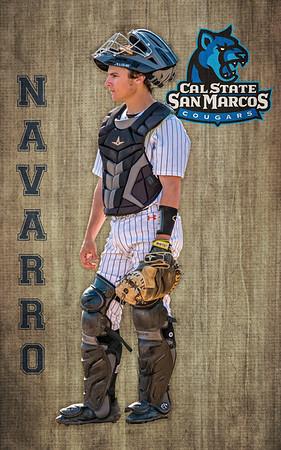 Navarro BANNER final