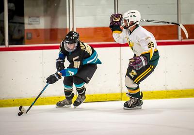 Edison vs Corona Ice Hockey-110