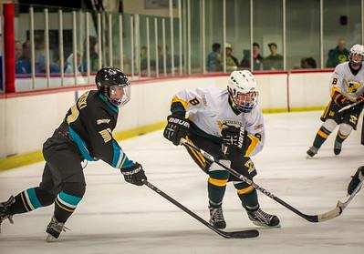 Edison vs Corona Ice Hockey-025